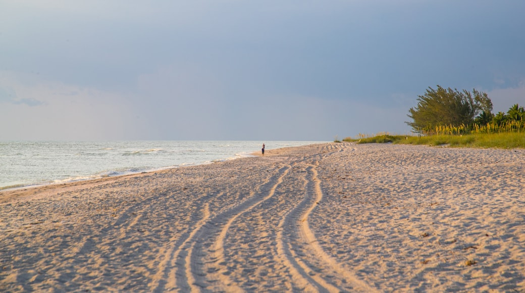 Captiva showing a sandy beach, a sunset and general coastal views