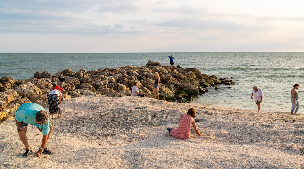 Captiva featuring a beach and general coastal views as well as a small group of people