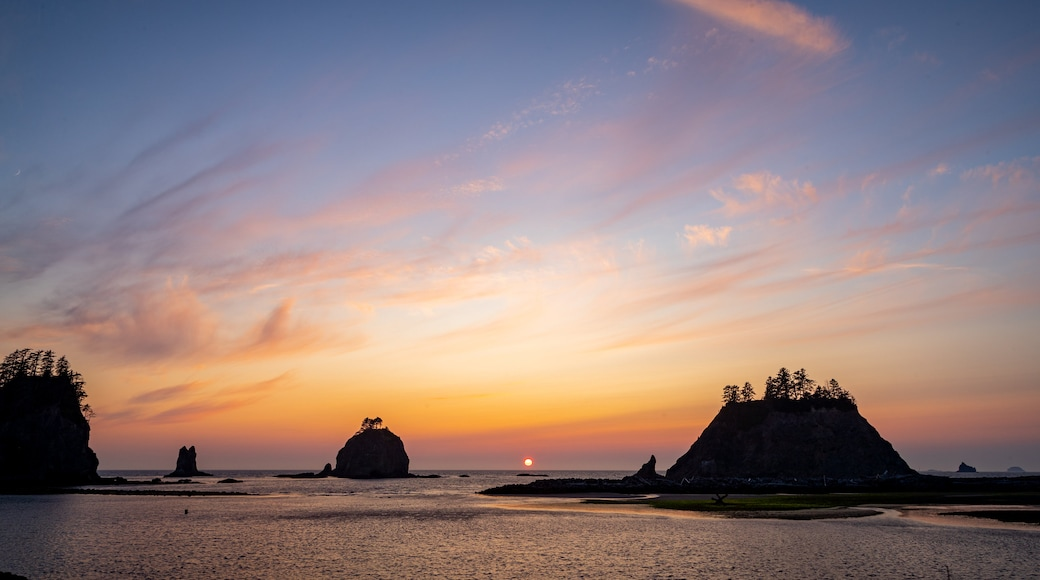 La Push featuring general coastal views and a sunset