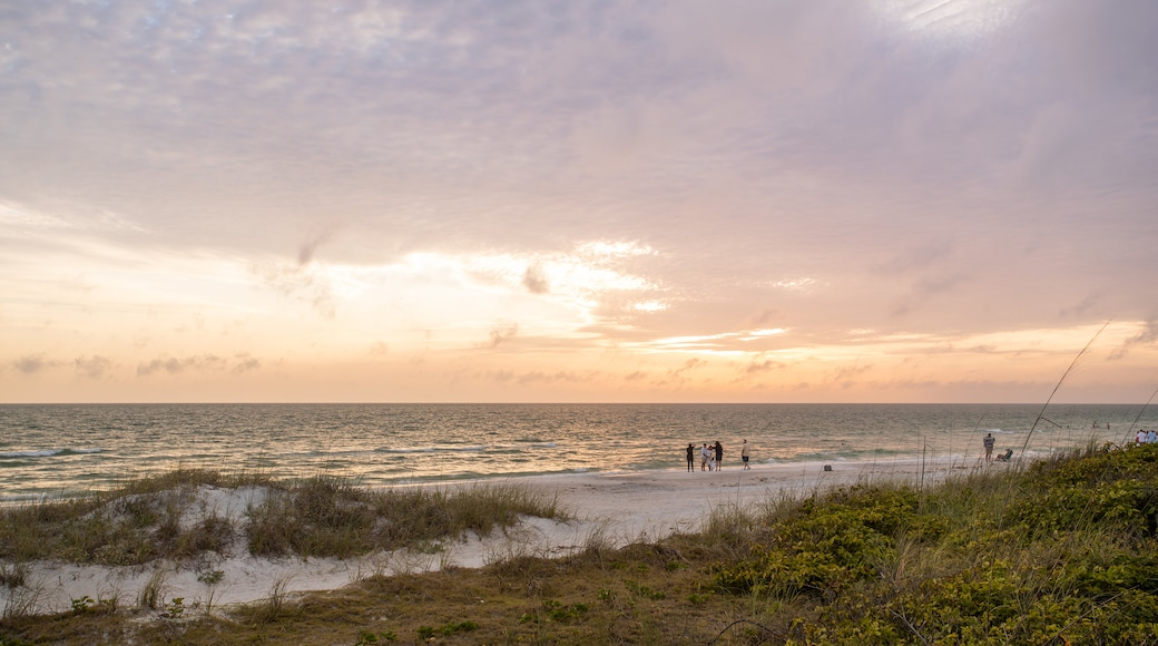 Treasure Island featuring a sunset and general coastal views