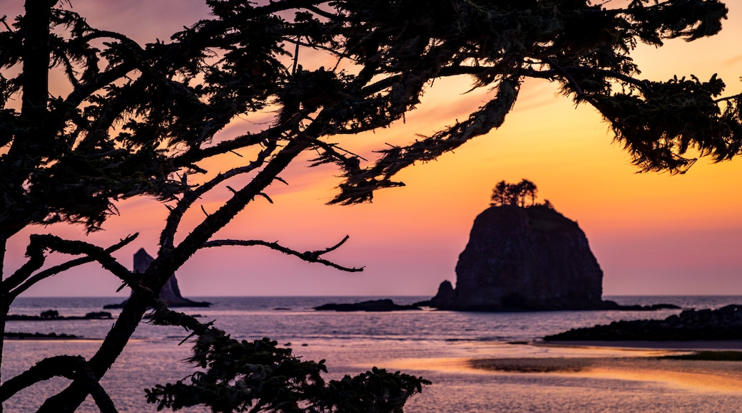 La Push which includes general coastal views and a sunset