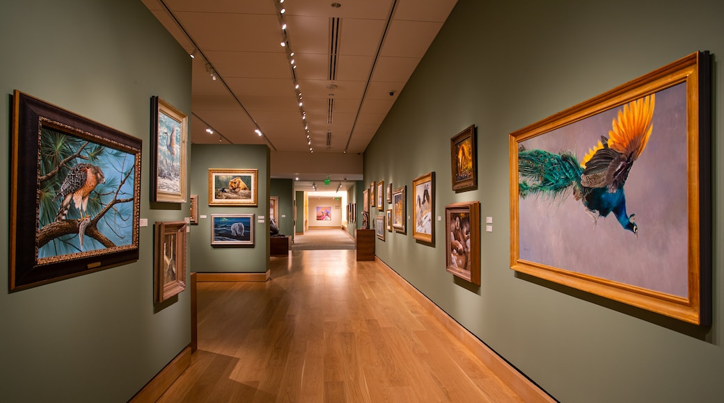 The James Museum of Western & Wildlife Art showing art and interior views