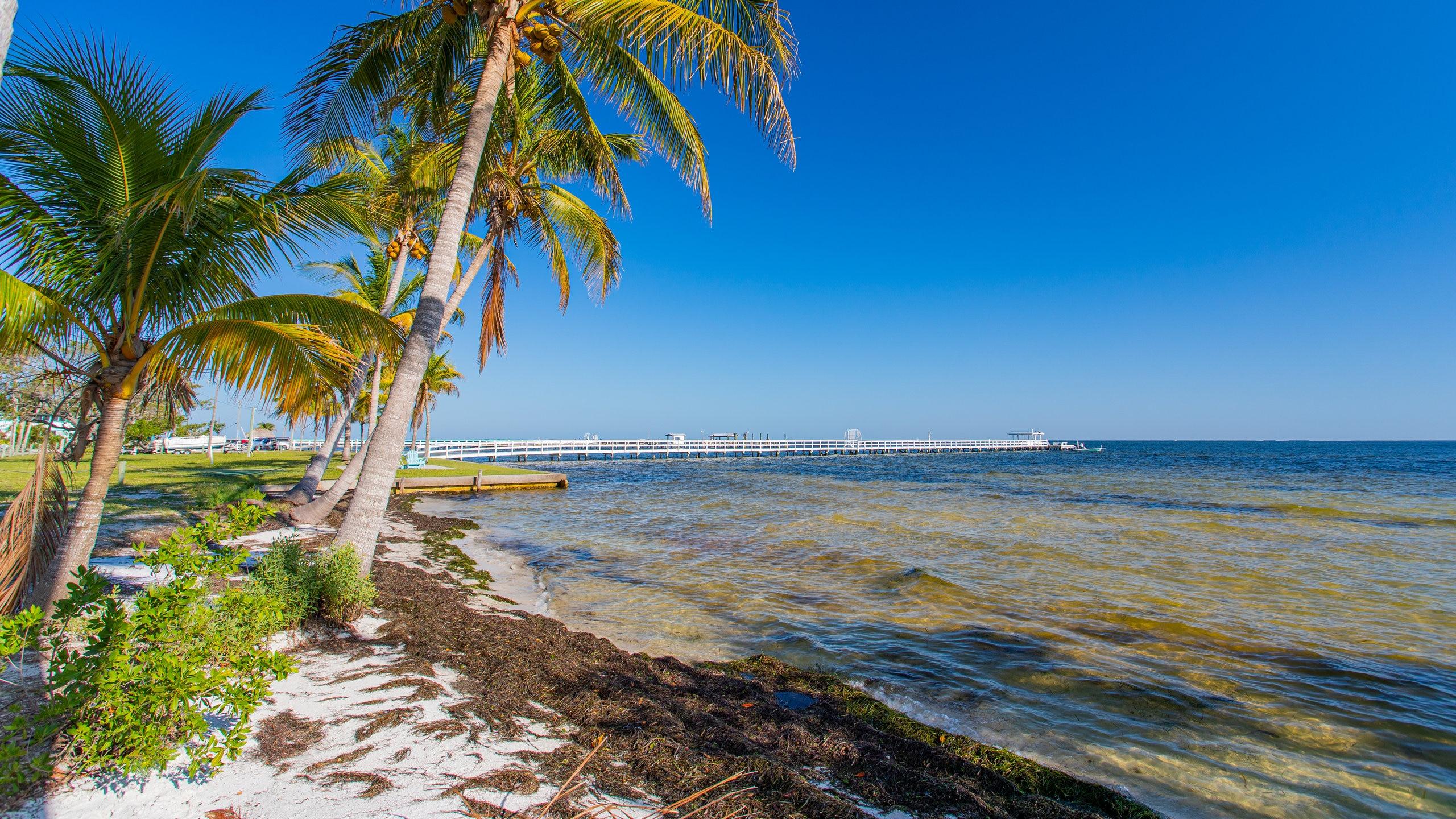 Bokeelia, Florida, United States of America