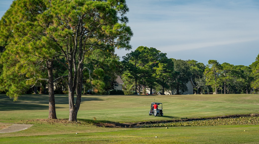 Golf Course At Seascape Resort which includes golf as well as an individual male