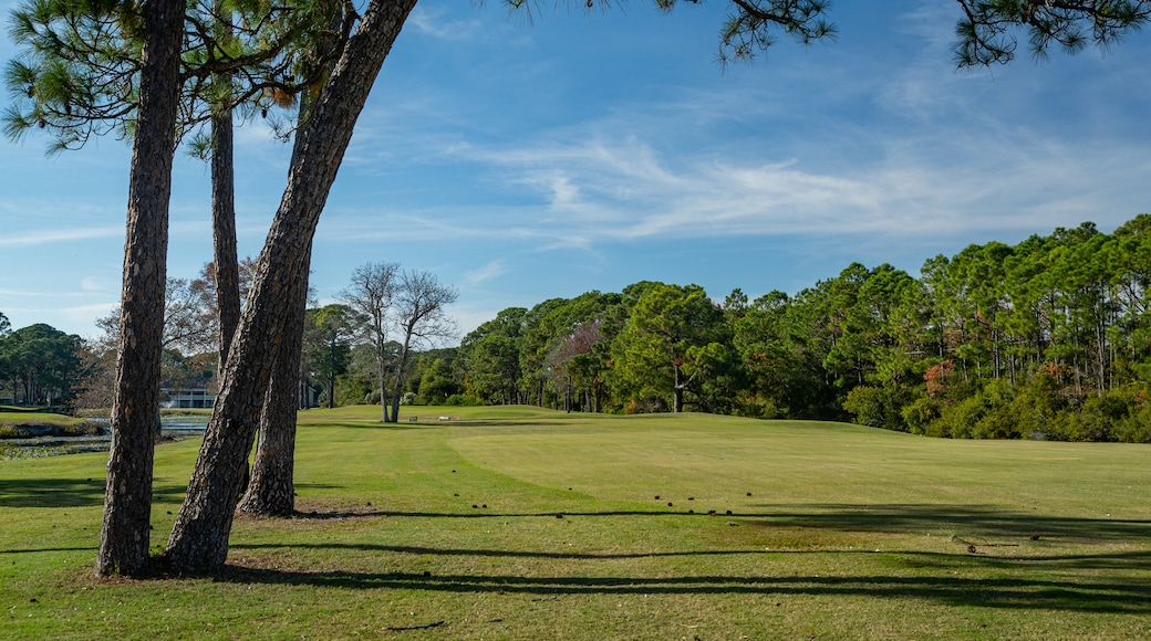Golf Course At Seascape Resort showing golf