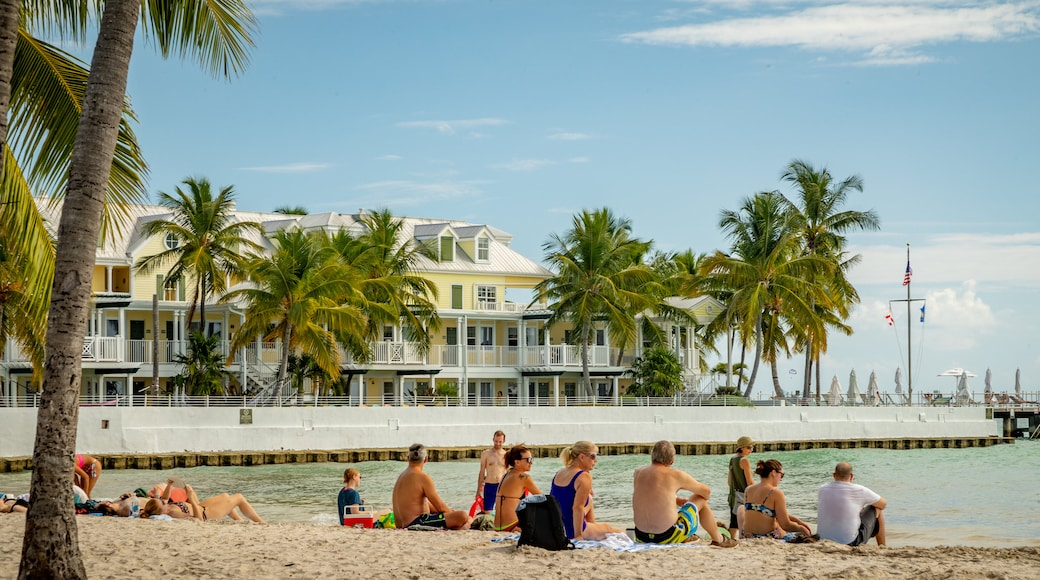 South Beach featuring a sandy beach and general coastal views as well as a small group of people