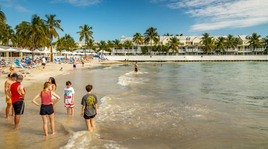 South Beach featuring tropical scenes, a sandy beach and general coastal views