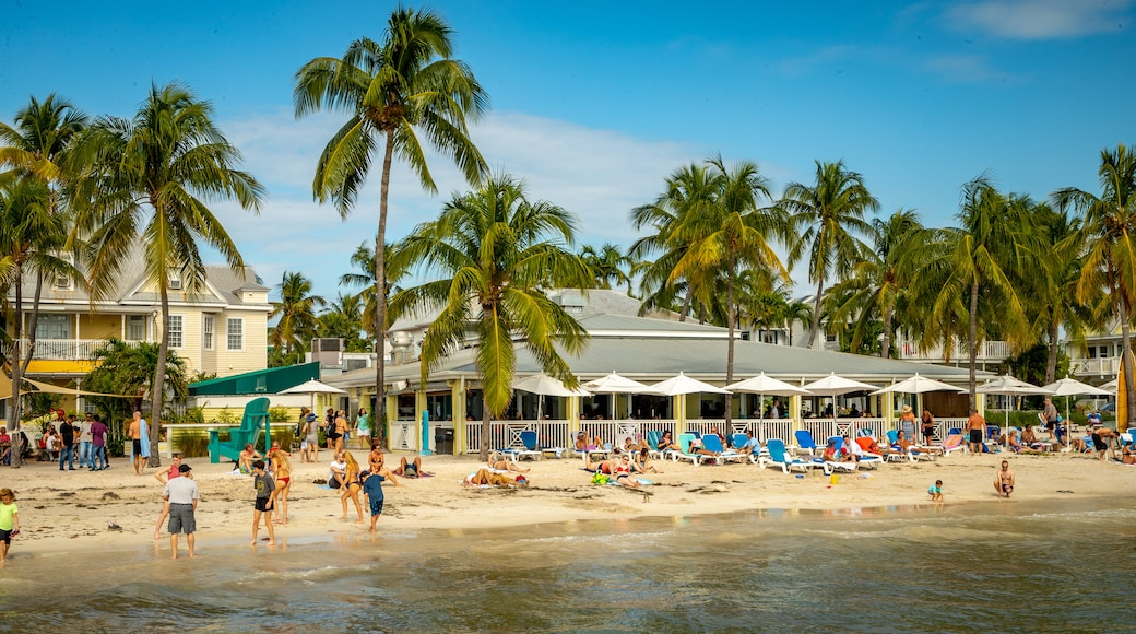 South Beach showing a beach, tropical scenes and general coastal views