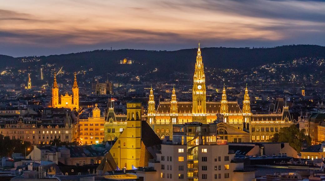 Wiener Rathaus District