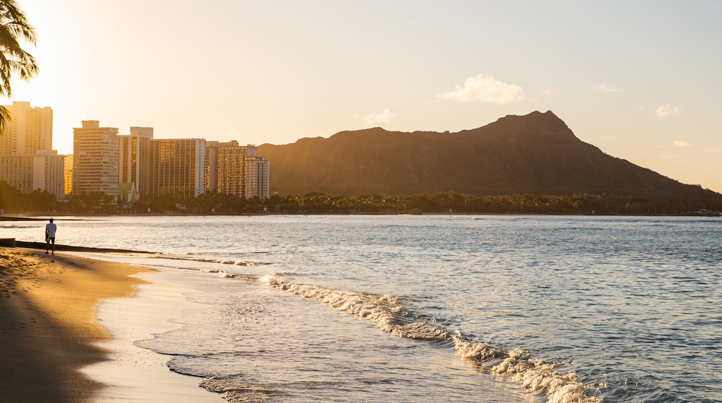 Waikiki Beach showing general coastal views, a sunset and a coastal town