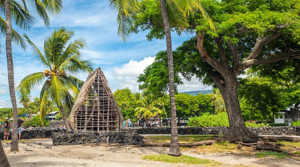 Pu\'uhonua o Honaunau National Historical Park which includes a park and tropical scenes