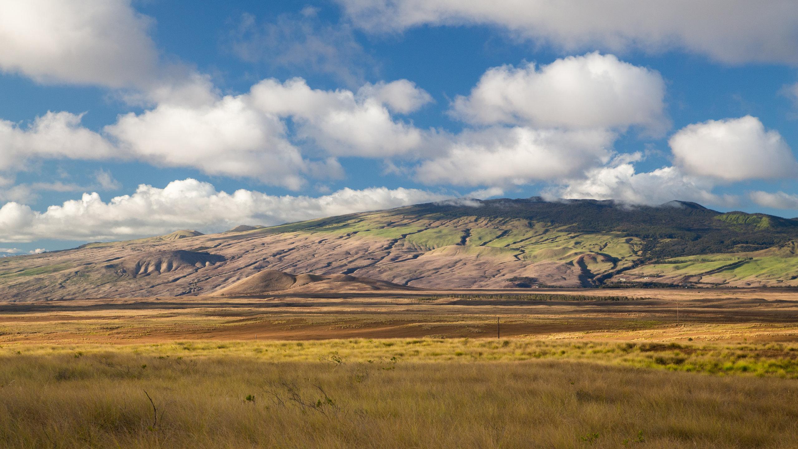 Kamuela, Hawaii, USA