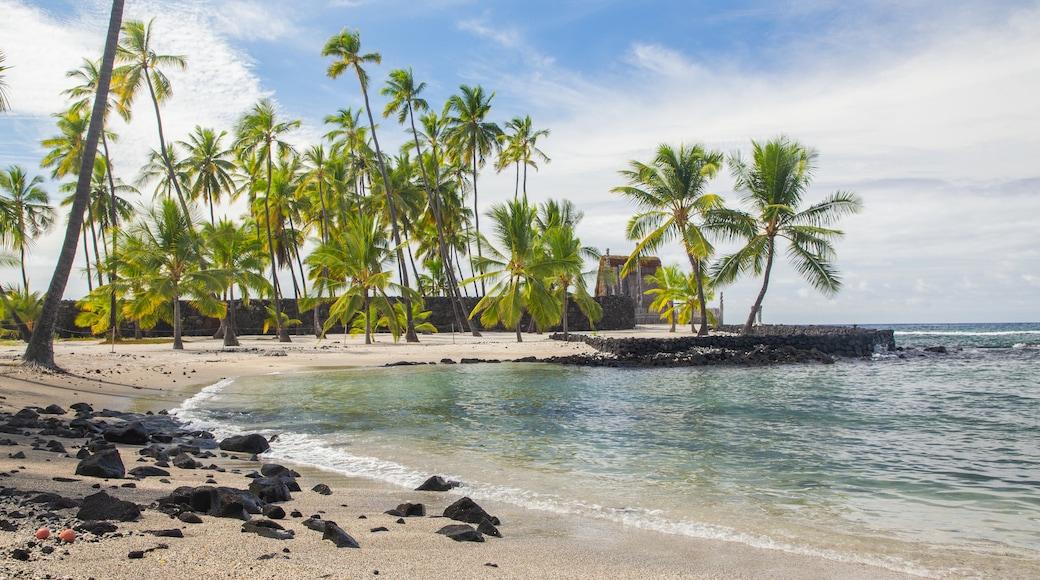 Pu\'uhonua o Honaunau National Historical Park featuring general coastal views, a sandy beach and tropical scenes