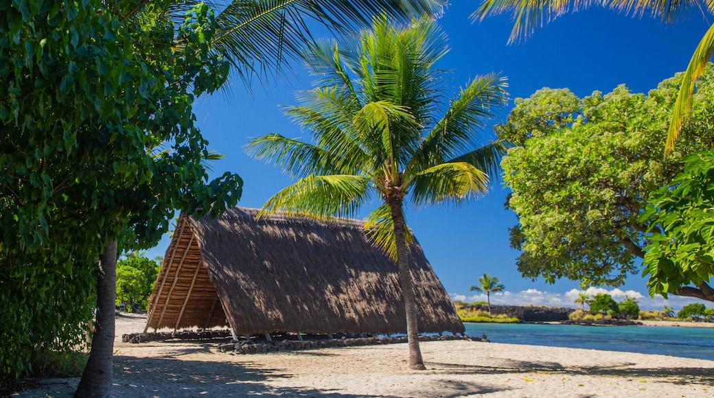 Kaloko-Honokohau National Historical Park which includes tropical scenes, general coastal views and a sandy beach