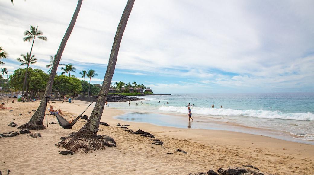 Magic Sands Beach which includes general coastal views, a beach and tropical scenes