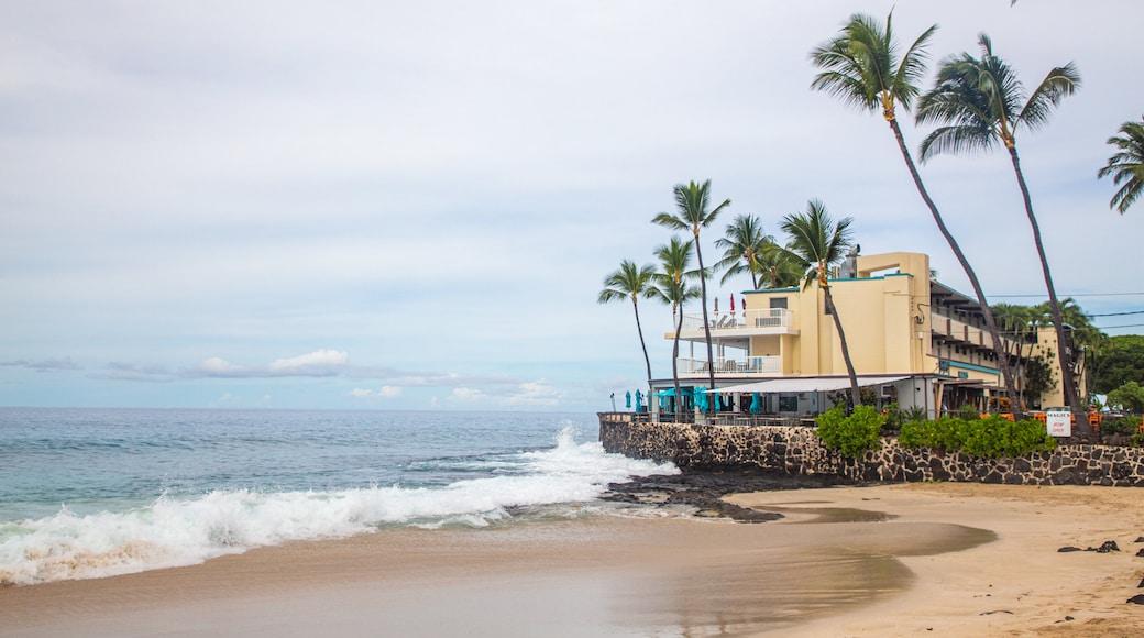 Magic Sands Beach which includes a sandy beach, a coastal town and general coastal views