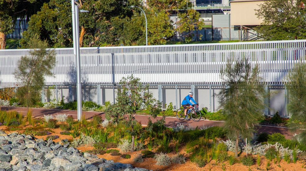 East Perth showing a garden and road cycling as well as an individual male