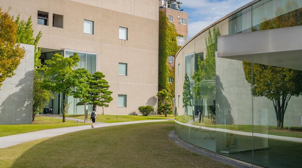 21st Century Museum of Contemporary Art featuring a garden