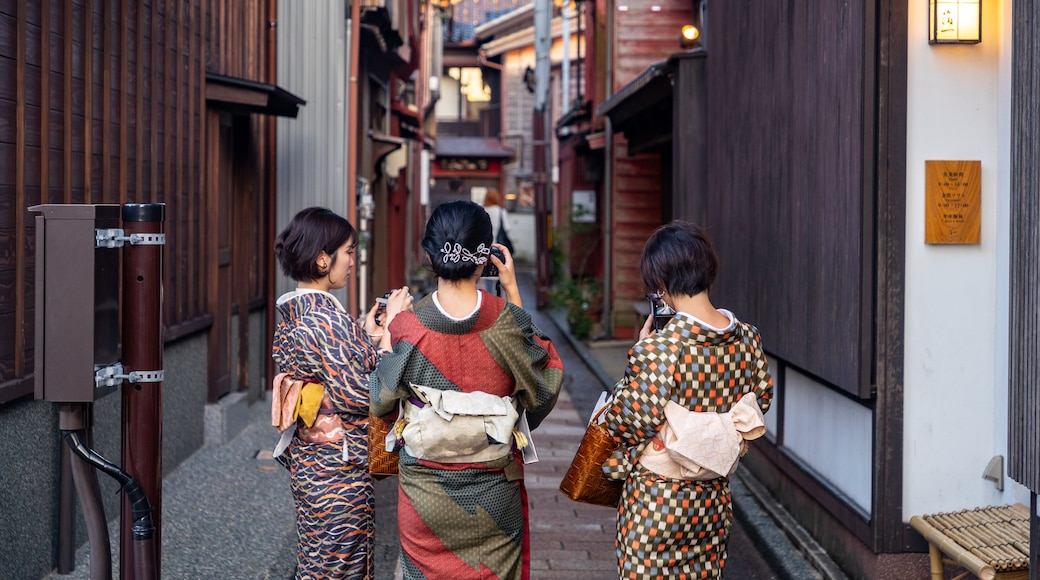 Higashiyama Higashi Chaya District featuring street scenes as well as a small group of people