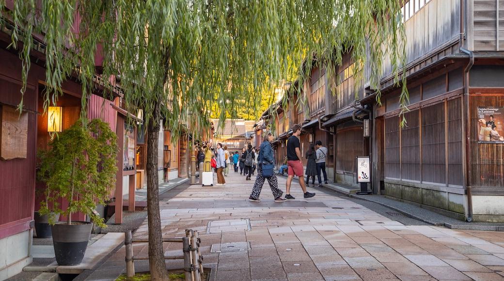 Higashiyama Higashi Chaya District showing street scenes
