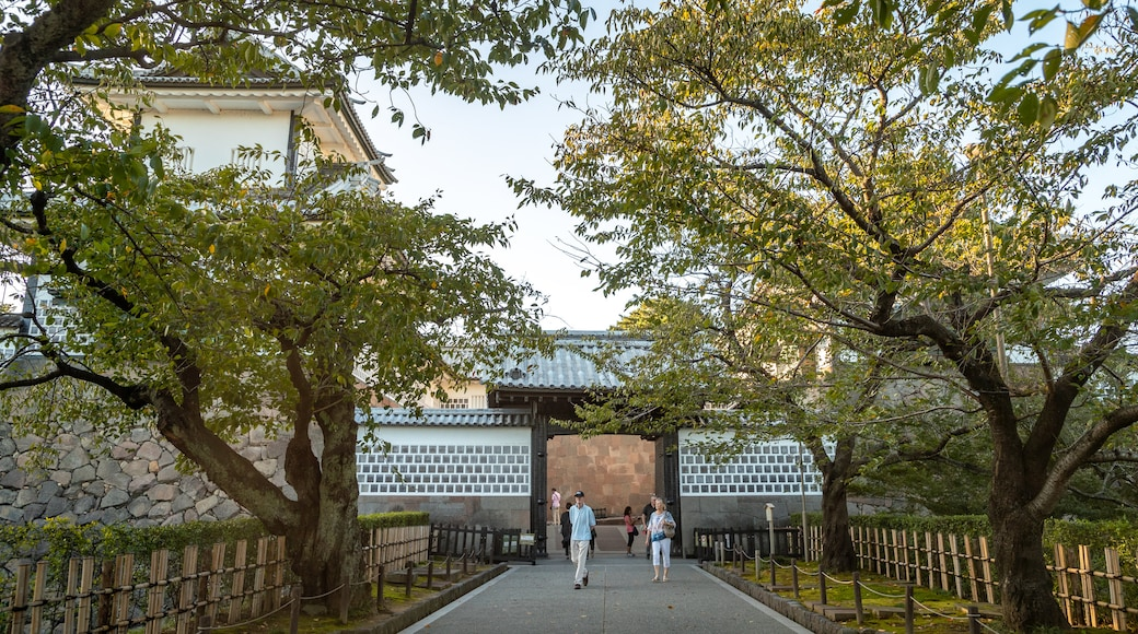 Kanazawa Castle showing a park as well as a couple