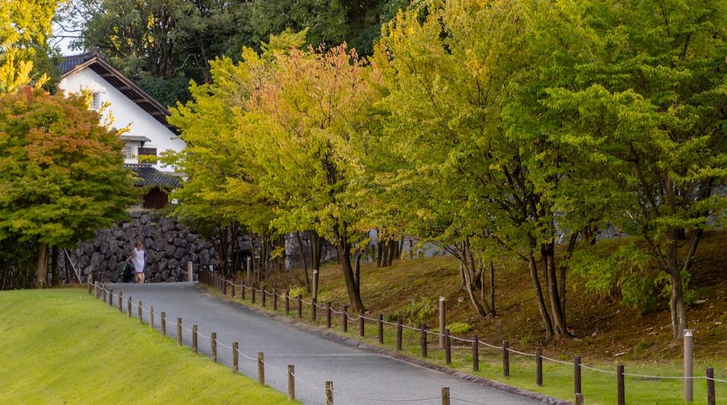 Kanazawa Castle featuring a garden