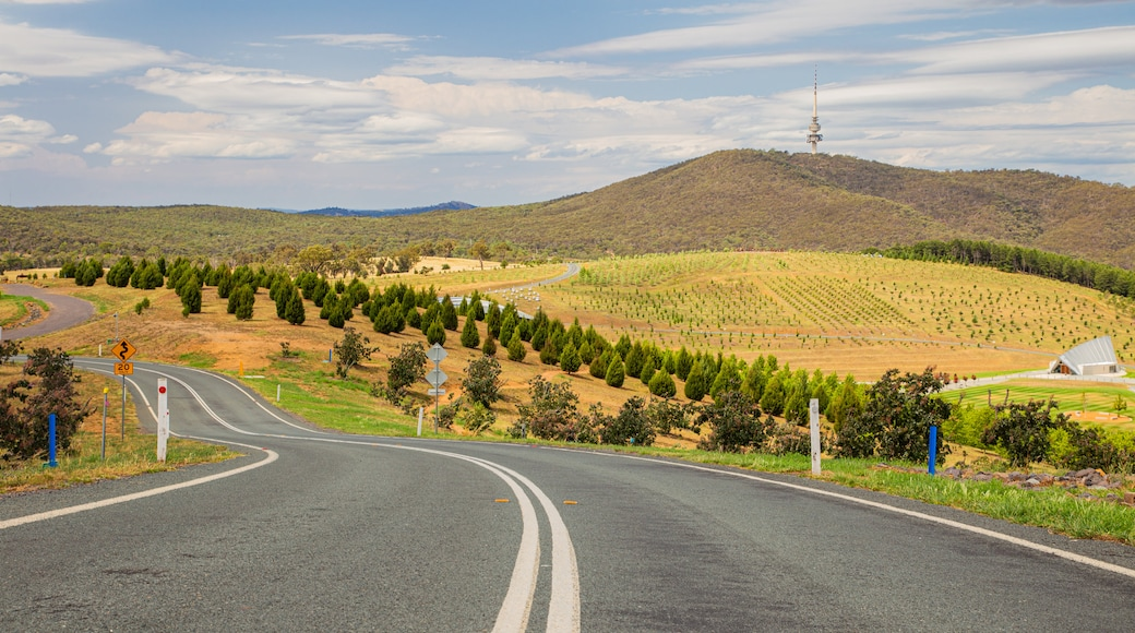National Arboretum Canberra featuring landscape views and tranquil scenes