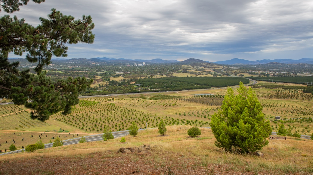 National Arboretum Canberra which includes tranquil scenes, farmland and landscape views