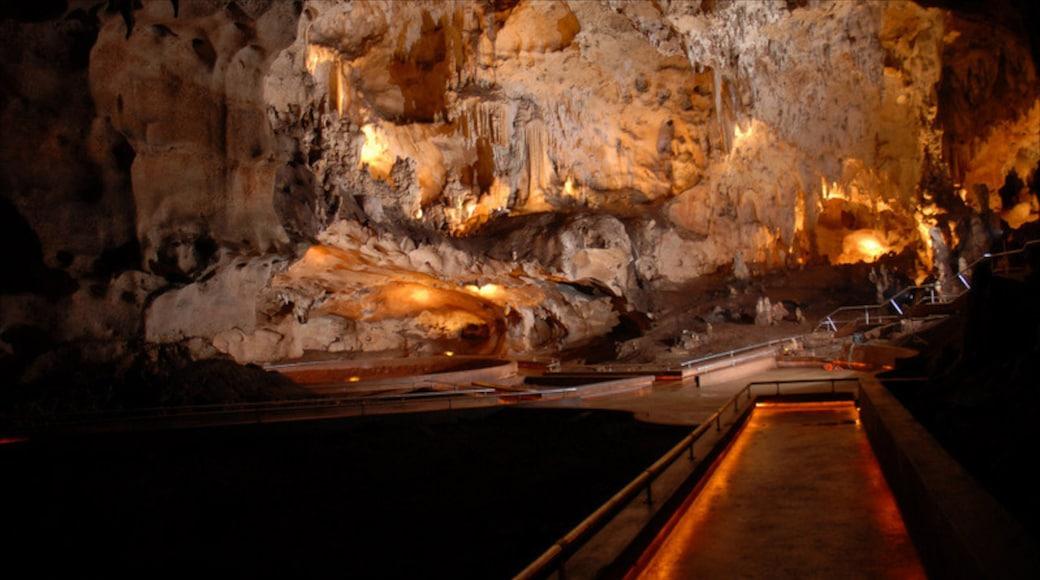 Dominikanische Republik welches beinhaltet Höhlen, Innenansichten und Brücke