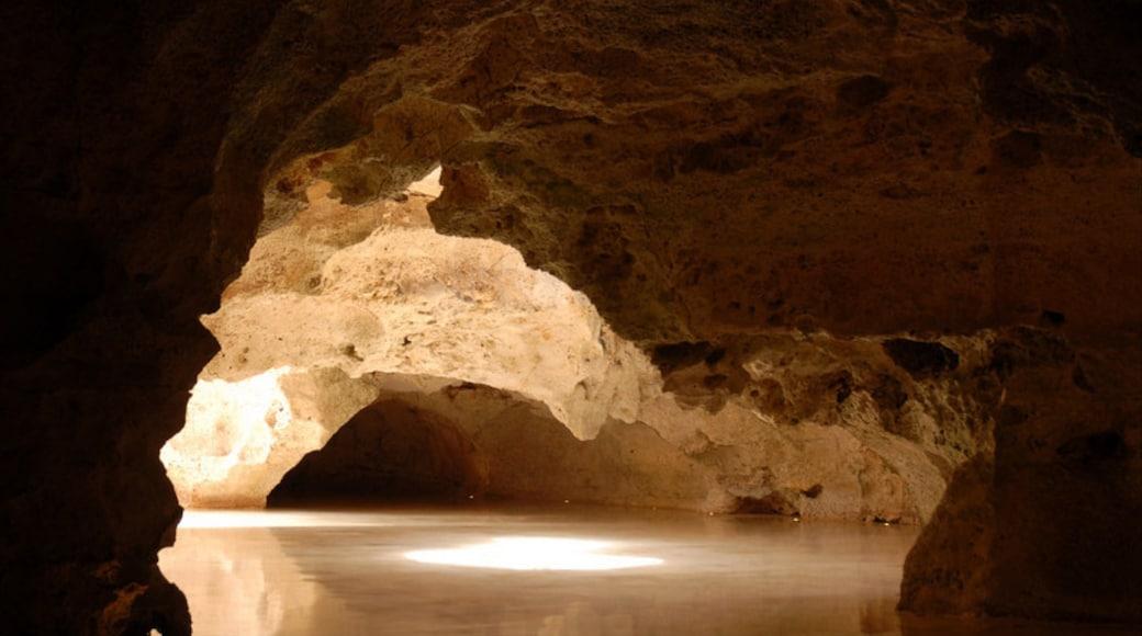 Dominikanische Republik mit einem Innenansichten und Höhlen
