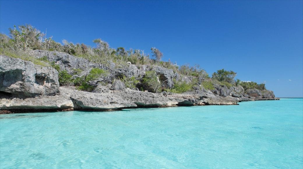 Playa Bayahibe welches beinhaltet schroffe Küste, Landschaften und tropische Szenerien