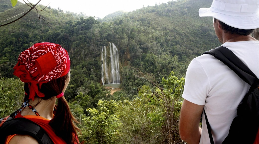 Los Haitises National Park featuring forests and a waterfall as well as a couple