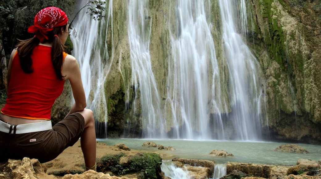 Los Haitises National Park featuring a waterfall and forests as well as an individual female