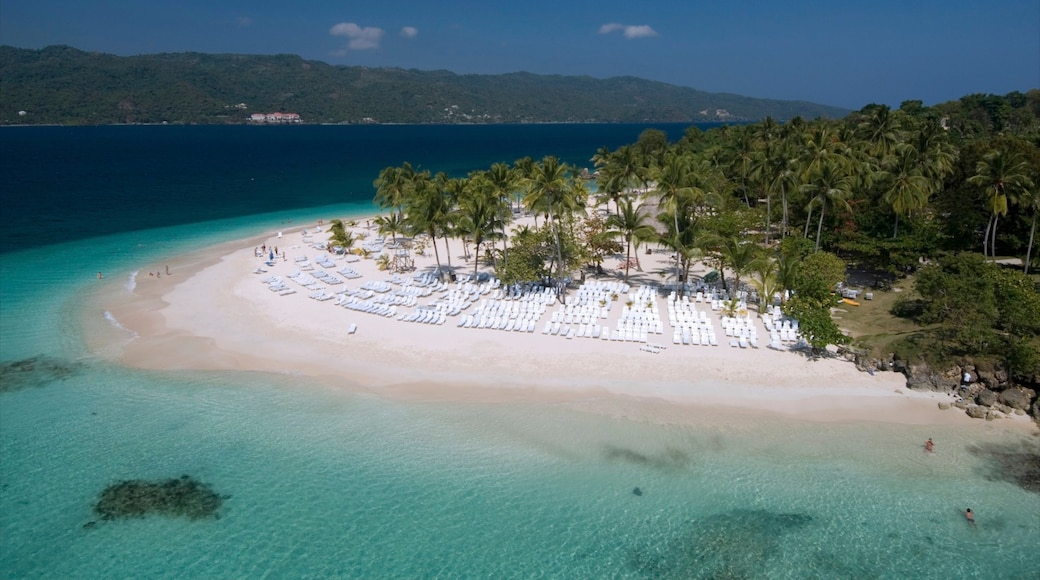 Dominican Republic showing a sandy beach, a luxury hotel or resort and tropical scenes