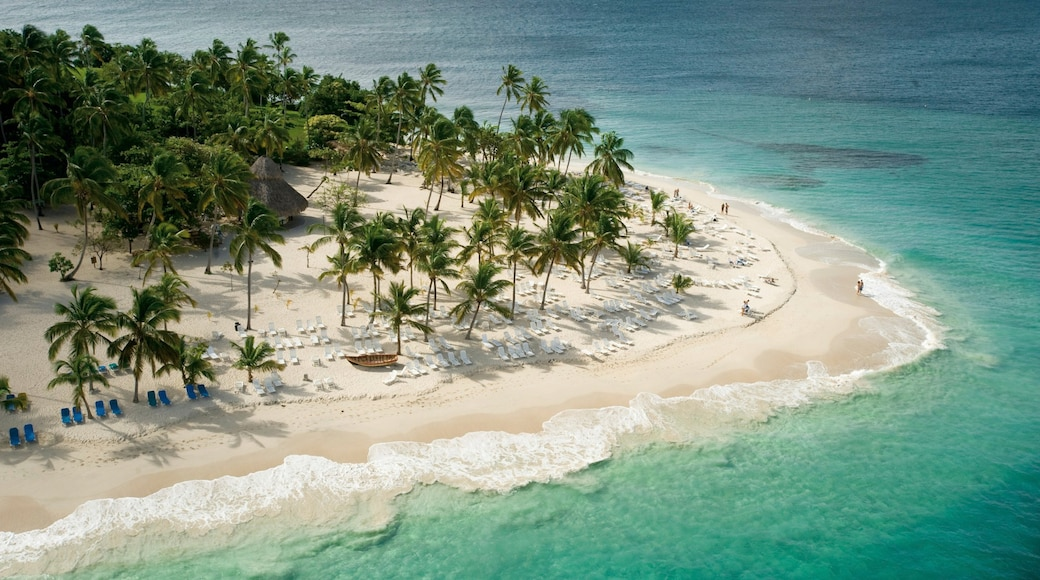 Dominican Republic showing a luxury hotel or resort, tropical scenes and a sandy beach