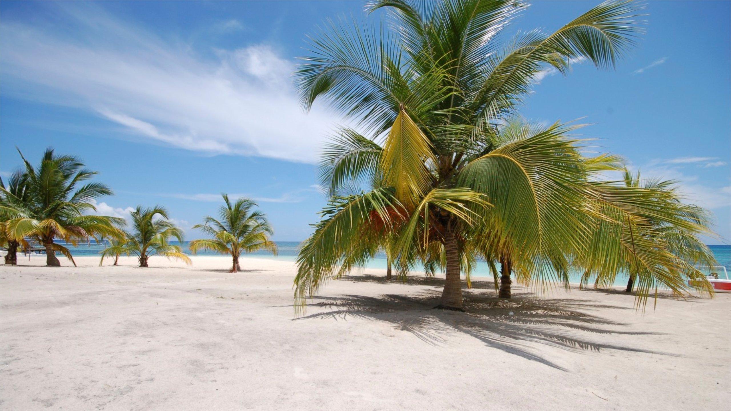 Parco Nazionale dell'Est, San Rafael del Yuma, La Altagracia, Repubblica Dominicana