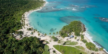 Samana showing tropical scenes and a beach