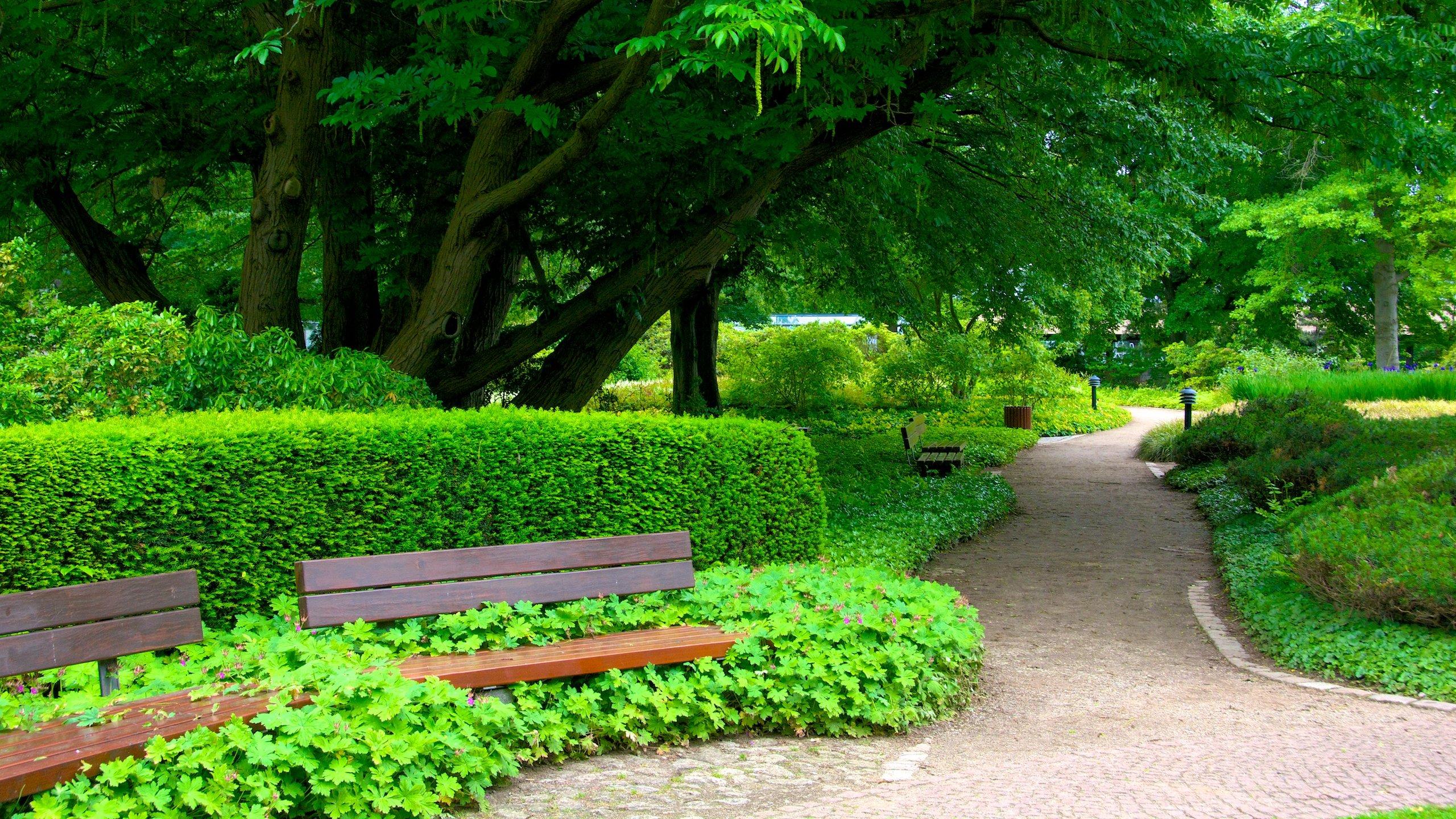 Botanischer Garten, Hamburg, Deutschland