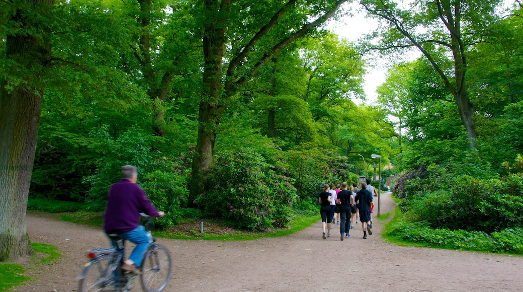 Stadtpark which includes a garden and cycling