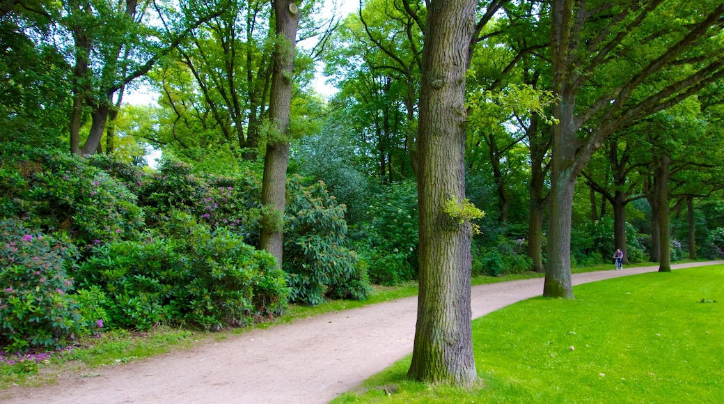 Stadtpark featuring a garden