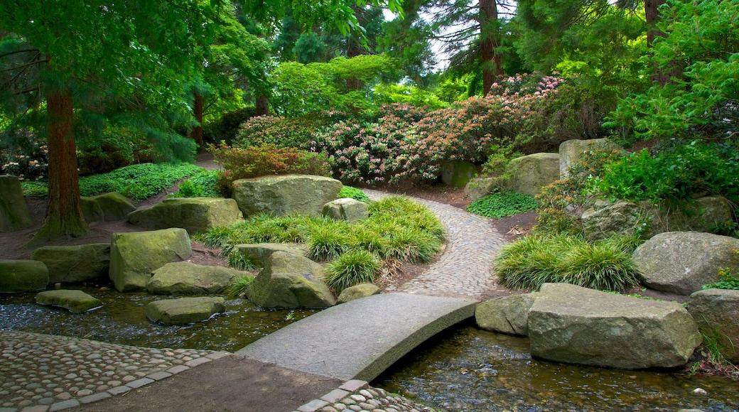 Japanischer Garten mit einem Park und Fluss oder Bach