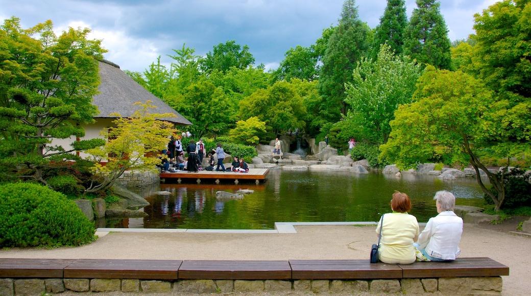 Japanischer Garten das einen Teich und Garten
