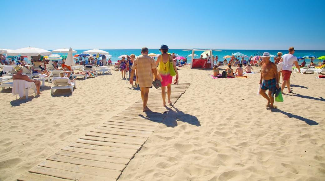 Playa de Postiguet que incluye una playa y también un grupo grande de personas