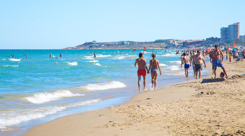 Alicante bevat een strand en zwemmen en ook een grote groep mensen