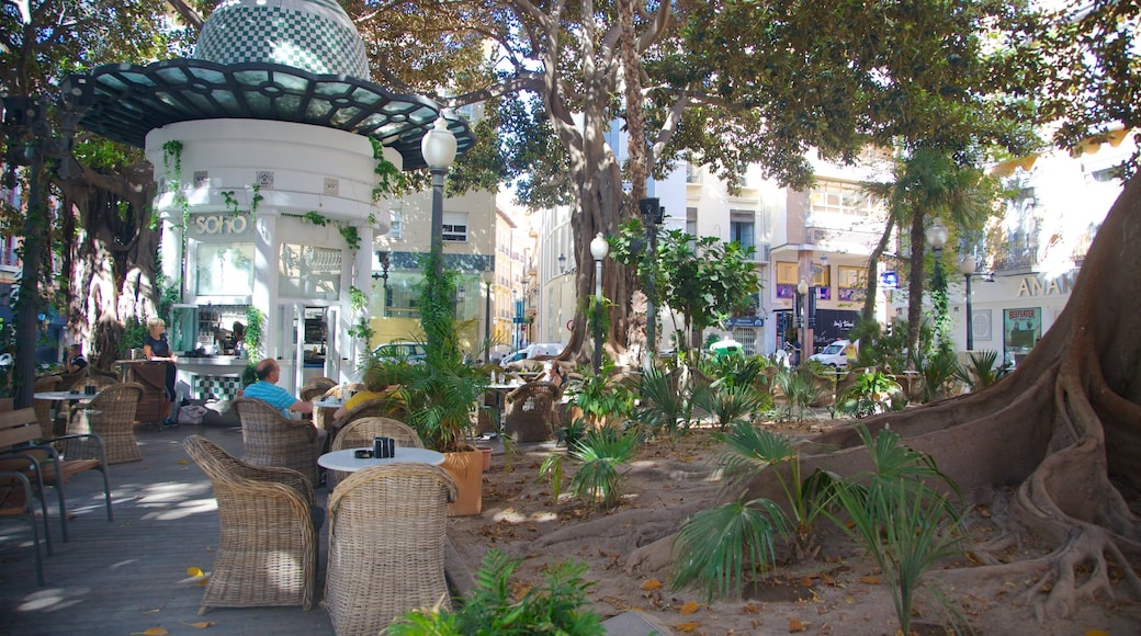 Alicante featuring café lifestyle and outdoor eating