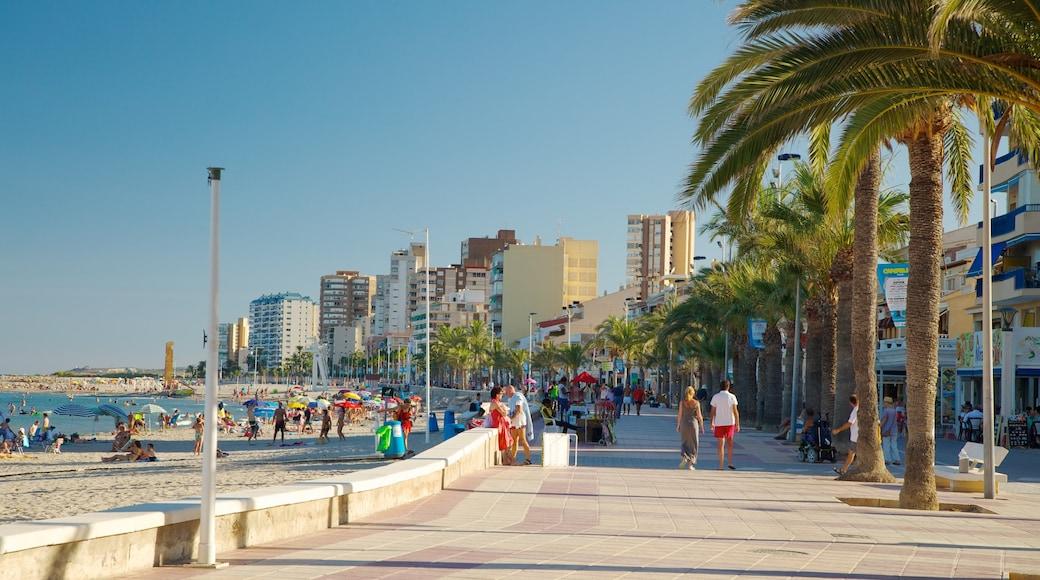 Campello Beach which includes a coastal town, a sandy beach and tropical scenes