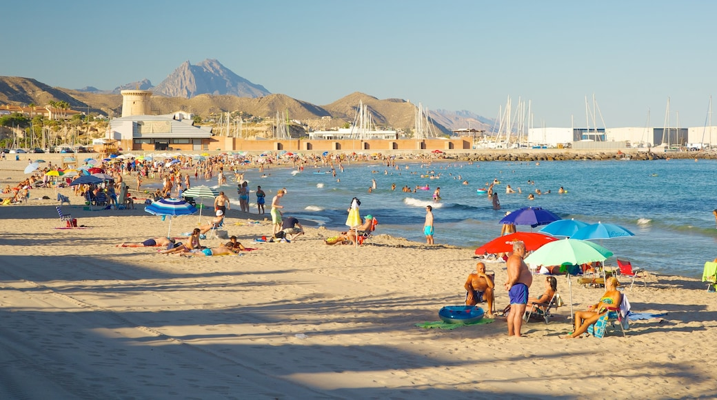 Campello Beach showing swimming, a beach and a bay or harbour