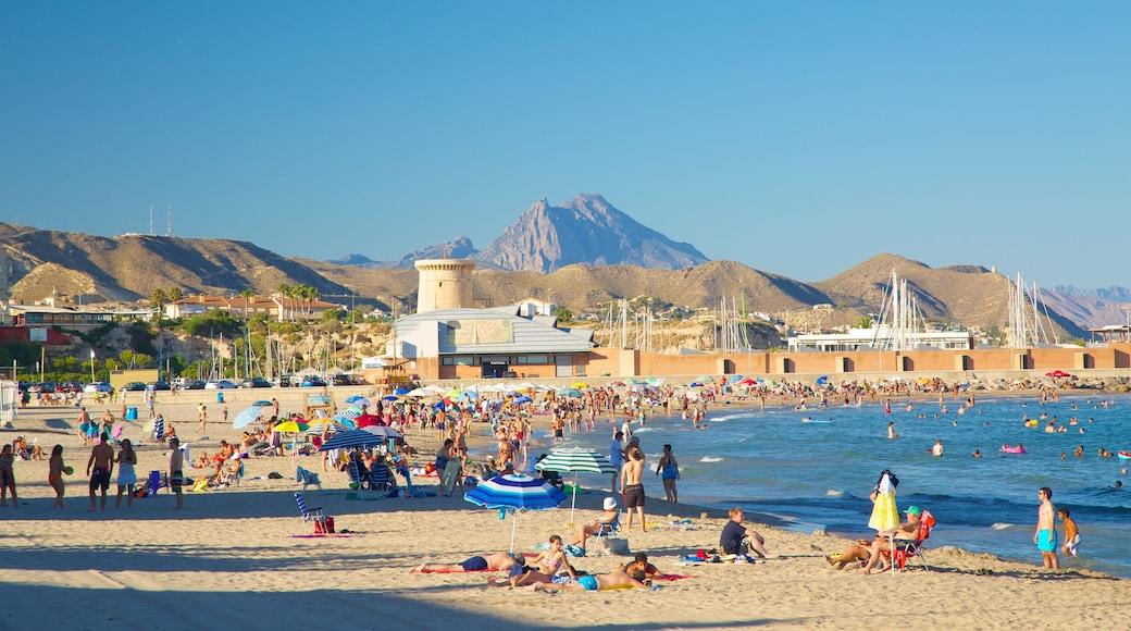 Campello Strand das einen Schwimmen, Bucht oder Hafen und Sandstrand