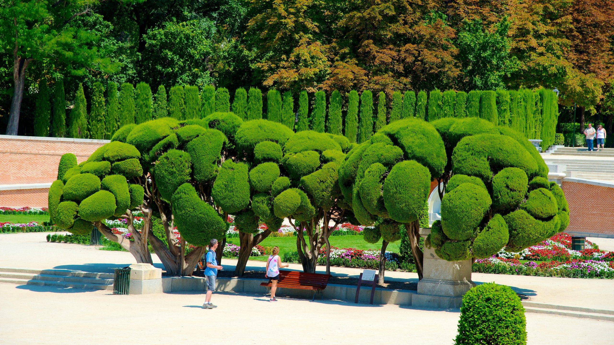 Relájate junto al estanque, camina por sus jardines muy bien cuidados, y admira las elegantes estatuas y edificios de uno de los parques más grandes y populares de Madrid.