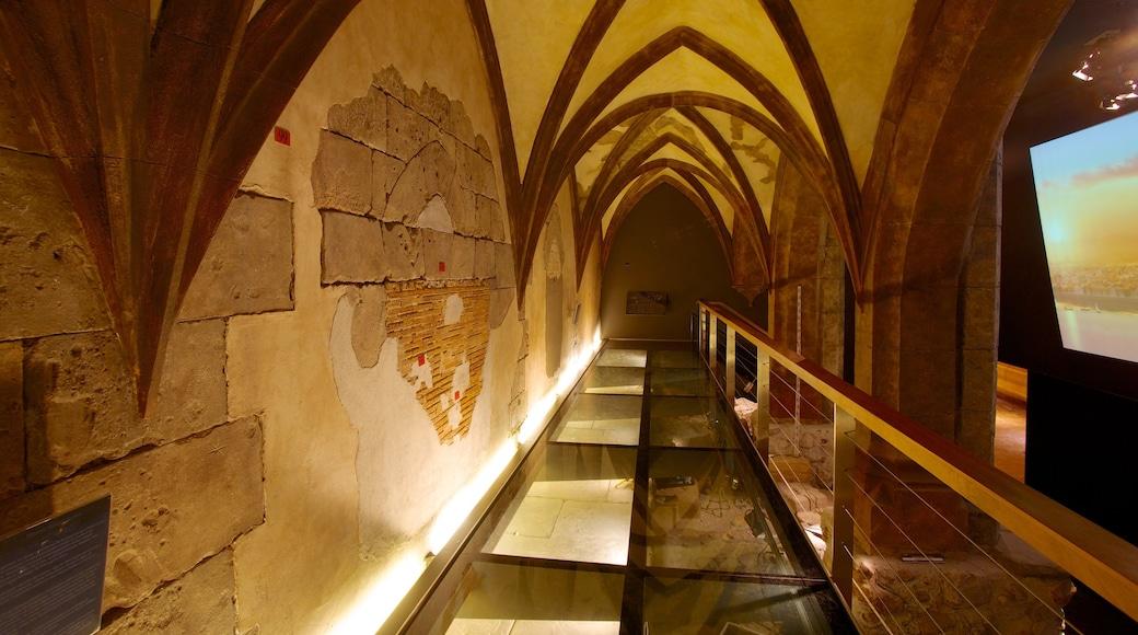 Museo Arqueológico de Alicante inclusief interieur